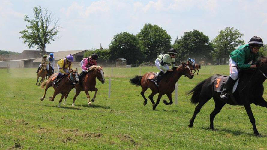 courses de poneys ouest